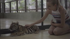 Happy woman petting little tiger cub and looking into the camera.  Stock Footage
