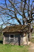 Old wooden house near the tree in spring - stock photo