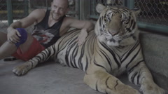 Tourist man smiling, petting big tiger and taking photo. Stock Footage