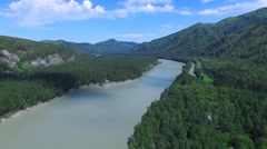 Flying over the river and trees in the forest aerial Stock Footage