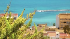 Beautiful kind on the coast of Altea Stock Footage