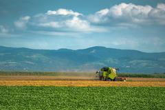 Combine harvester working in wheat field - stock photo