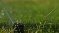 Water Sprinkler Pop Up Slow Motion Arkistovideo