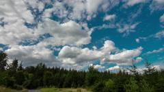 idyllic summer landscape timelapse - stock footage