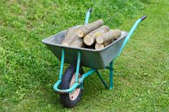 Hand truck with firewood on the green grass Stock Photos