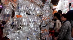 Stands with plastic bags with goldfishes at the crowded market in Hong Kong. Stock Footage