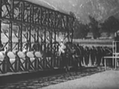 Side view of jockeys lining up at the starting gate, 1940s Stock Footage