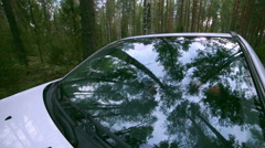 Trees, forest Reflection in Windscreen. Car drives through forest. On-board Stock Footage
