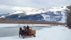Horse and carriage follow a dog through snow by mountains Stock Footage