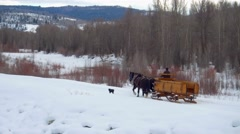 Horse and carriage follow dog through snow and mountains Stock Footage
