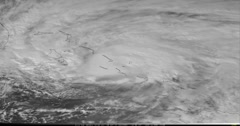 Hurricane Sandy Stock Footage