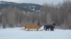 Drone video of horse and carriage following a dog in the snow Stock Footage