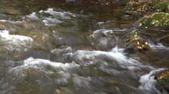 Mountain Stream with Autumn Foliage Stock Footage