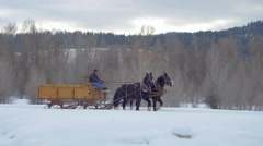 Horse and carriage travel through a snow trail in the woods Stock Footage