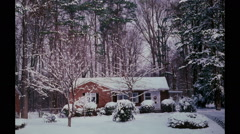 House in Four Seasons Stock Footage