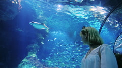 A woman looks at a lot of fish in the aquarium. It should be in the tunnel with Stock Footage