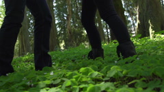 Two people coming together in the forest Stock Footage