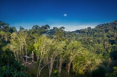 Calm evening outback forest scenery in Thailand Stock Photos