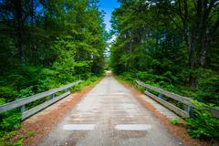 Bridge over a creek in the forest at Bear Brook State Park, New Hampshire. Stock Photos