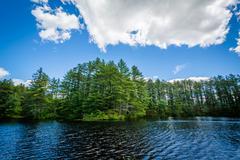 Lake at Bear Brook State Park, New Hampshire. Stock Photos