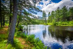 Lake at Bear Brook State Park, New Hampshire. Kuvituskuvat