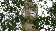 Big Ben: the clock tower behind the canopy of leaves Stock Footage
