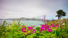 Summer flowers hill golden gate bridge park panorama 4k time lapse sf usa Stock Footage