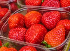 Fresh strawberries in a bowl Stock Photos