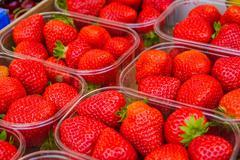 Strawberry bowl on a fruit market Stock Photos