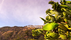 Los angeles famous hollywood sign hill cactus panorama 4k time lapse usa Stock Footage