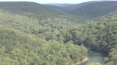 Vast Unbroken Eucalyptus Forest and River in Royal Park in Australia Stock Footage