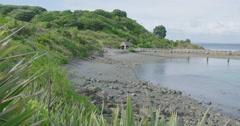 Tiritirimatangi island near auckland, new zealand Stock Footage