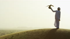 Tethered falcon on gloved wrist of male Arab owner in sunset silhouette Stock Footage