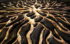 Molten Gold Seeping Out Of Rock - stock illustration