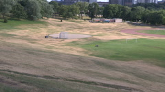 Toronto park with dry grass in severe drought during hot summer - stock footage