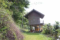 blurry image of old wooden house - stock photo