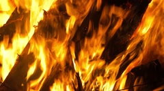 The flames greedily eat the dry branches of trees - stock footage
