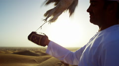 Proud Arab in dishdasha in silhouette at sunrise with his trained falcon Stock Footage