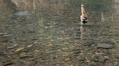 Zen harmony and calmness of nature. Serene fresh water creek and rock pyramid  Stock Footage