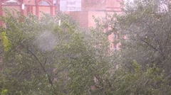 Heavy rain and stormy wind bending trees in residential area 4K video - stock footage