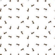 Ant Isolated on White Background. - stock illustration