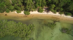 Aerial top view of tropical coast with mangrove and transparent water - Tanzania Stock Footage
