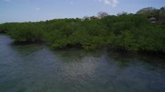 Aerial close view along the mangroves in Mafia Island,  Tanzania Stock Footage