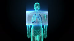 Scanning body. Rotating Human lungs, Pulmonary Diagnostics, Blue X-ray light. - stock footage