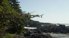 West coast in Tofino on a windy day Stock Footage