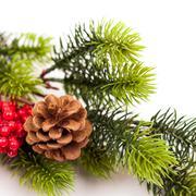 Christmas tree branches border over white Kuvituskuvat