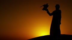 Silhouette of Middle Eastern falconer in desert with his bird of prey at sunrise Stock Footage
