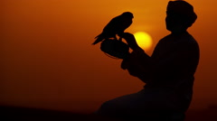 Sunset silhouette Arabic man with bird of prey on desert sands Stock Footage