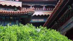 Plants waving against the Lama Temple, Beijing, China Stock Footage