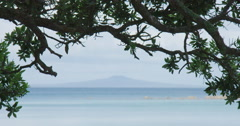 Rangitoto Island, Auckland, New Zealand Stock Footage